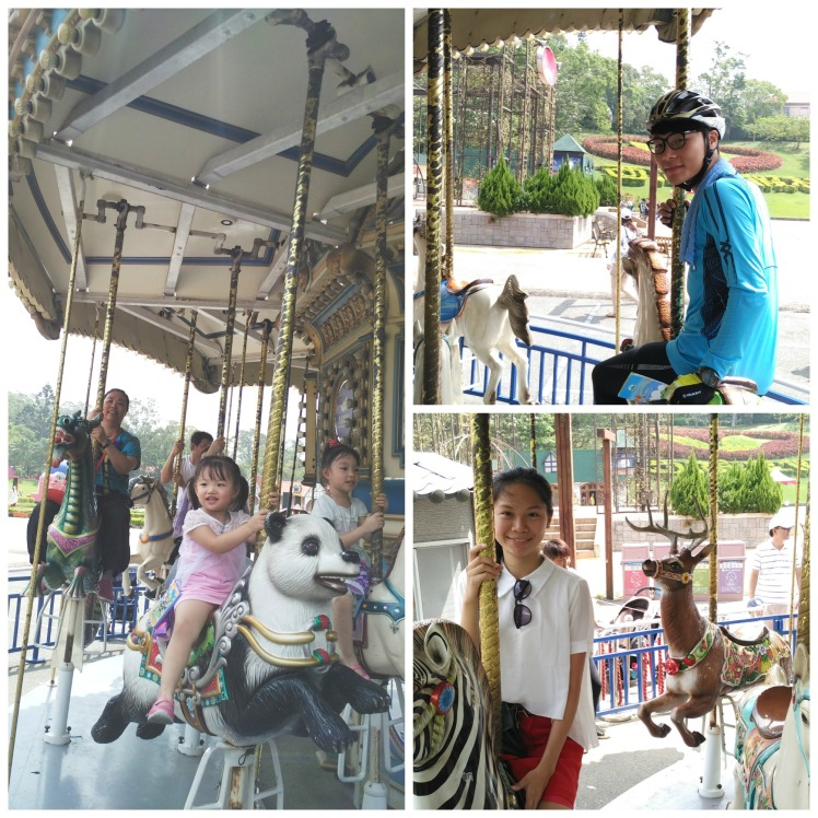 carousel collage
