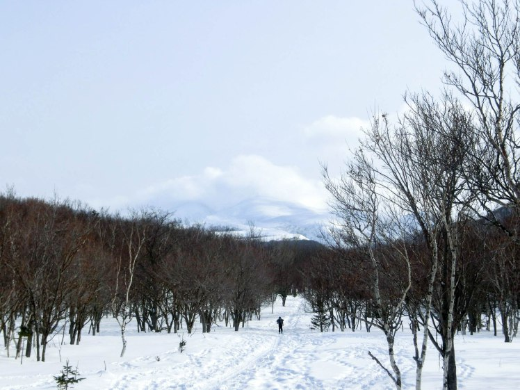 shiretoko national park